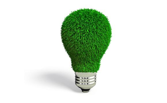 O Despertar da Sustentabilidade