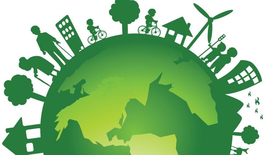 Meio Ambiente e Educação