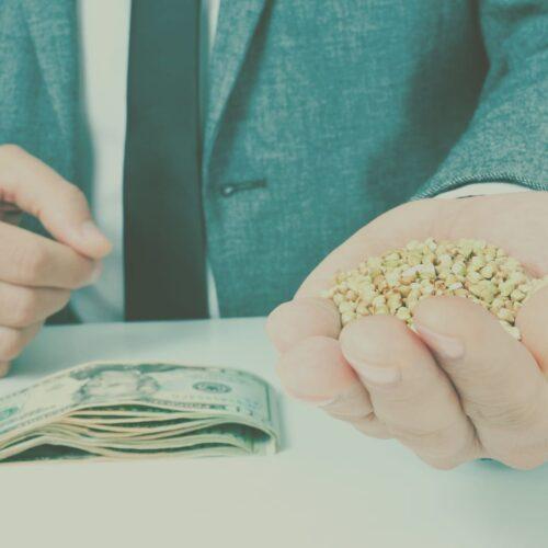 Alternativas ao agronegócio brasileiro